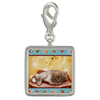 魚の夢を見ている枕日の柔らかい赤ん坊の子ネコ チャーム