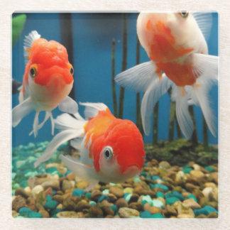 魚の物語 ガラスコースター