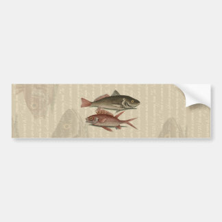 魚の赤いとまり木のヴィンテージの漁師のギフト バンパーステッカー