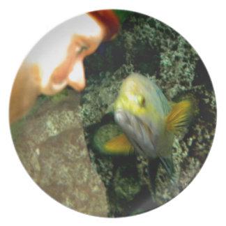 魚の顔の格言 プレート