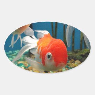 魚は行きます 楕円形シール