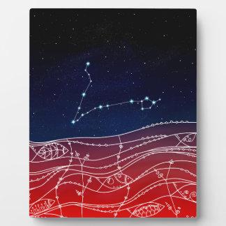 魚類の星座のデザイン フォトプラーク
