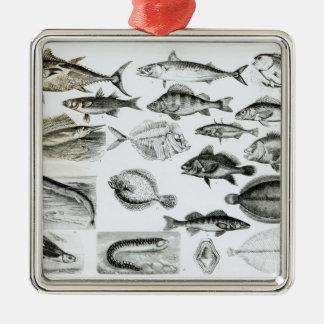魚類学のOsseous魚 メタルオーナメント