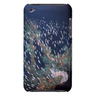 魚13の学校 Case-Mate iPod TOUCH ケース