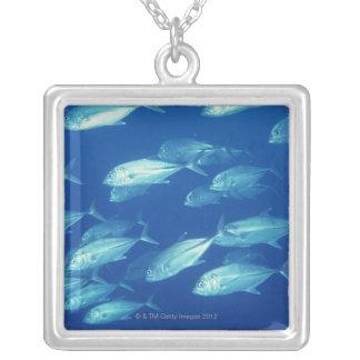 魚4の学校 シルバープレートネックレス