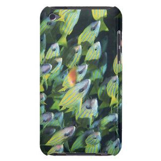 魚7の学校 Case-Mate iPod TOUCH ケース