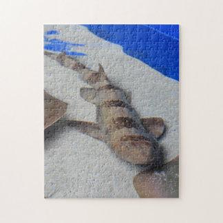 鮫のパズル ジグソーパズル