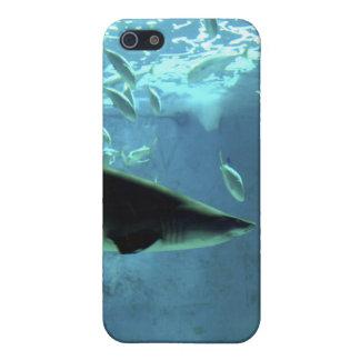 鮫のiPhoneの場合 iPhone SE/5/5sケース