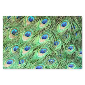 鮮やかでエキゾチックな孔雀の羽 薄葉紙