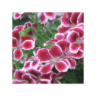 鮮やかで暗いピンクのナデシコ キャンバスプリント