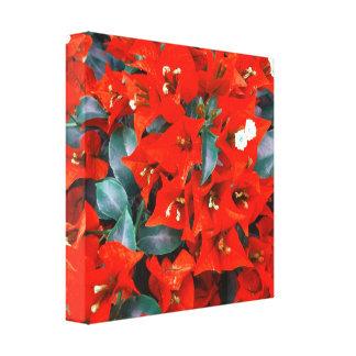 鮮やかで赤いブーゲンビリアの花 キャンバスプリント