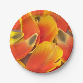 鮮やかなオレンジチューリップの花びらの写真 ペーパープレート