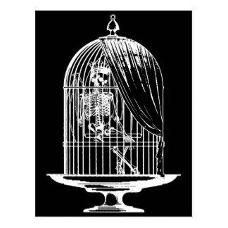 鳥かごの骨組 ポストカード