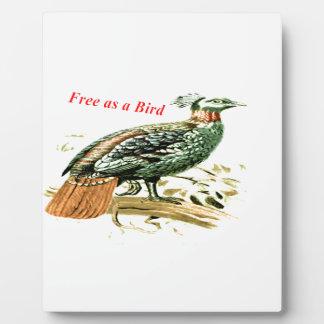 鳥として自由なキジのスケッチ フォトプラーク