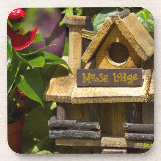 鳥の家 コースター