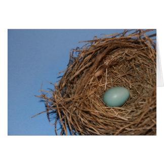 鳥の巣2 カード