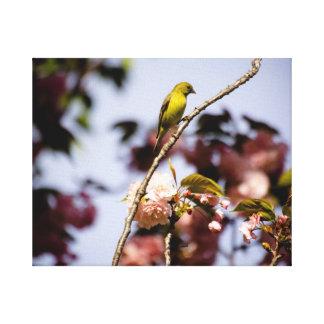 鳥の平静 キャンバスプリント