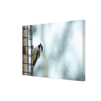 鳥の送り装置でとまるかわいい《鳥》アメリカゴガラ キャンバスプリント