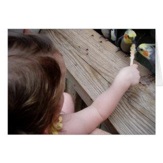 鳥の送り装置 カード