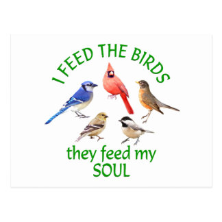 鳥の送り装置 ポストカード