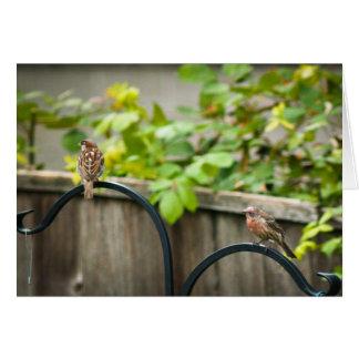鳥の送り装置#2 カード