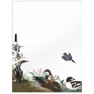鳥の野性生物のホワイトボードのAudubonのコラージュ ホワイトボード