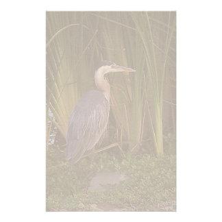 鳥の野性生物動物の沼地の写真撮影 便箋