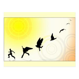 鳥の頭脳 ポストカード