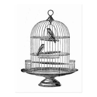 鳥の…郵便はがきが付いているヴィンテージの鳥かご ポストカード
