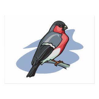 鳥のBullfinch ポストカード