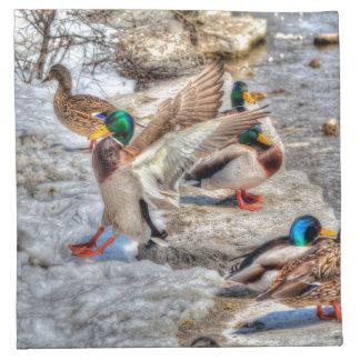 鳥恋人のためのマガモのアヒルの野性生物の写真 ナプキンクロス