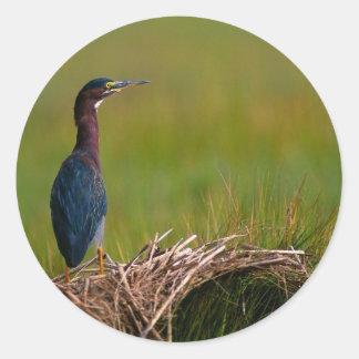 鳥静かな時の緑の鷲 ラウンドシール