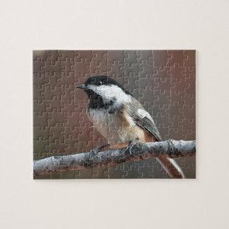 《鳥》アメリカゴガラの写真撮影 ジグソーパズル