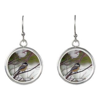 《鳥》アメリカゴガラ6259のイヤリング イヤリング