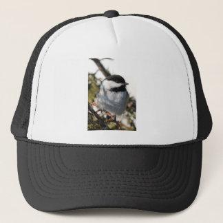 《鳥》アメリカゴガラ9693 キャップ
