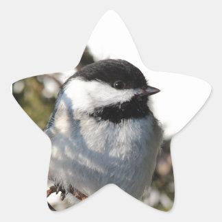 《鳥》アメリカゴガラ9693 星シール