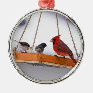 (鳥)ショウジョウコウカンチョウおよびユキヒメドリ メタルオーナメント