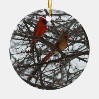 (鳥)ショウジョウコウカンチョウのオーナメント セラミックオーナメント