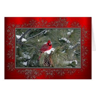 (鳥)ショウジョウコウカンチョウ3093のクリスマスカード カード