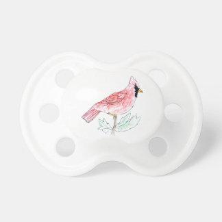 (鳥)ショウジョウコウカンチョウ おしゃぶり