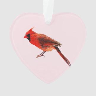 (鳥)ショウジョウコウカンチョウ オーナメント
