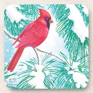 (鳥)ショウジョウコウカンチョウ- コースター