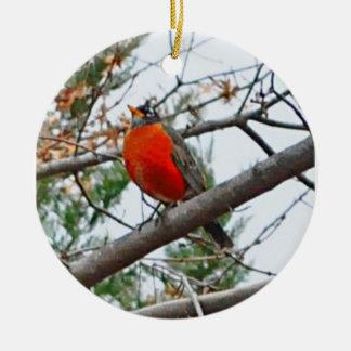 (鳥)ショウジョウコウカンチョウ セラミックオーナメント