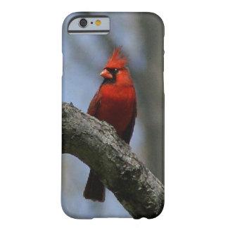 (鳥)ショウジョウコウカンチョウ、細いiPhone6ケース Barely There iPhone 6 ケース