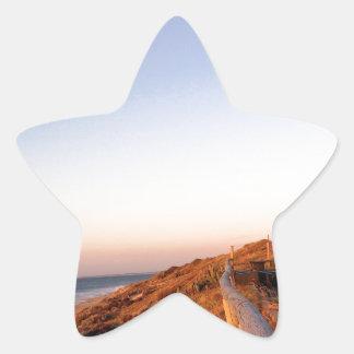 《鳥》ハヤブサのビーチSeagul 星シール