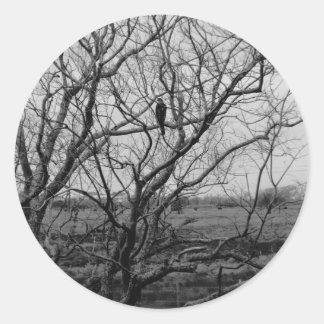《鳥》ハヤブサの狩り ラウンドシール