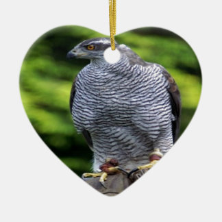 《鳥》ハヤブサの鳥の自然のデザイン セラミックオーナメント