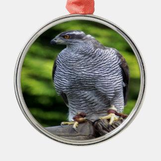 《鳥》ハヤブサの鳥の自然のデザイン メタルオーナメント