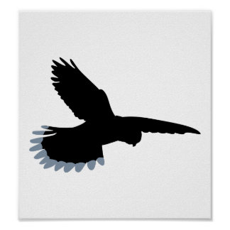 《鳥》ハヤブサ ポスター