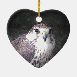 《鳥》ハヤブサ、野性生物、自然、写真肉食鳥 セラミックオーナメント